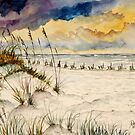 Florida beach sand dunes  by derekmccrea