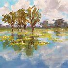 Kakadu reflections by Terri Maddock
