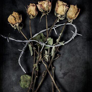 roses by JoanaKruse