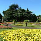 Levengrove  Park by Alexander Mcrobbie-Munro