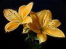 Golden Lilies by Sandy Keeton