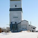 Dufresne, Manitobba Grain Elevator by Vickie Emms