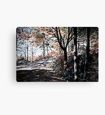Bucks Pocket OverlookTrail Canvas Print