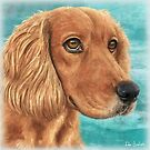 Painting of a Gorgeous Golden Brown Cocker Spaniel by ibadishi