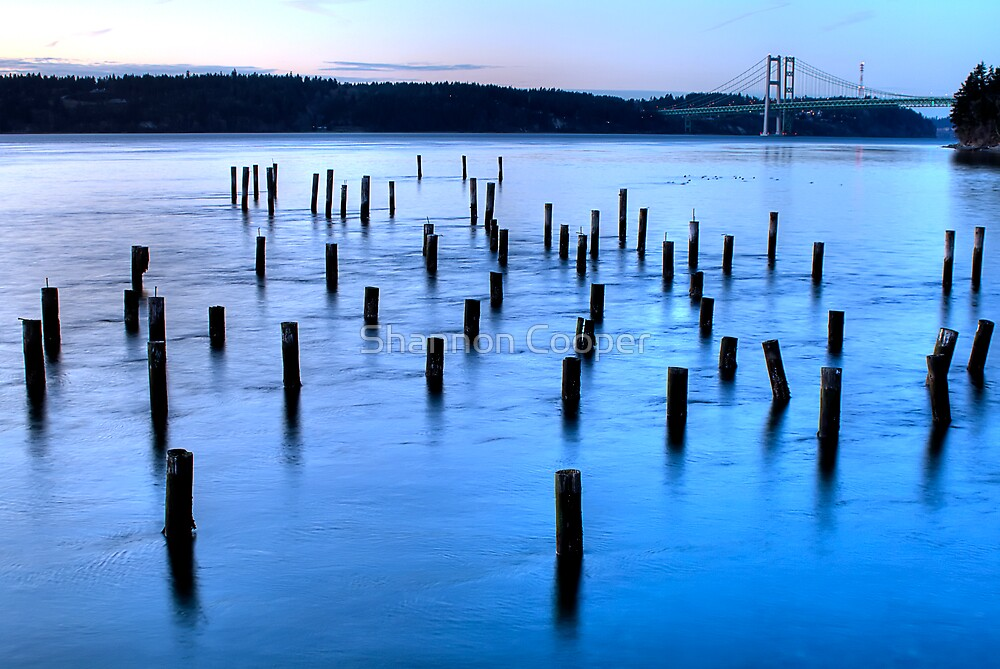 Titlow Sunset by Shannon Beauford