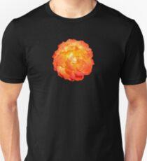 ORANGE_00195_SQ5K Unisex T-Shirt
