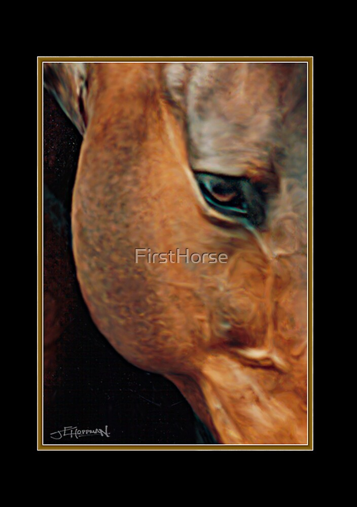 ...Into Aslan's Soul by FirstHorse