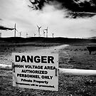 Wind, Voltage and a Cow... by Jenny Miller