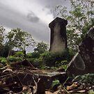 Forgotten Dead by Liam MacKenzie