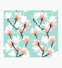 magnolia mint Photographic Print