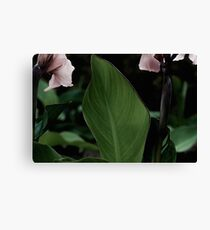 Green Plant in the Garden Canvas Print
