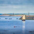 Setting Sail by Viv Thompson