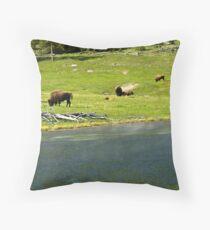 ~ Buffalo Chip Strip ~ Throw Pillow