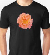 ORANGE_00200_SQ5K Unisex T-Shirt