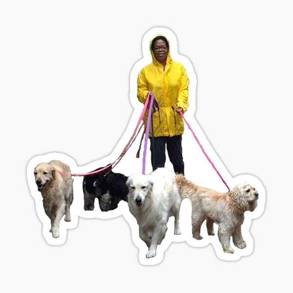 Oprah Walking Dogs Sticker