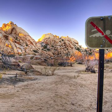 No Swimming in the Desert by shubat
