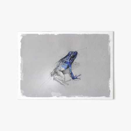 frog sketch by psdelux Art Board Print
