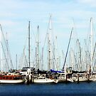 A Plethora of Yachts  by cjcphotography