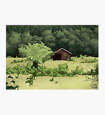 Rodney's Barn Photographic Print