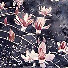 japanese magnolia flower art by derekmccrea
