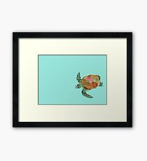 Water Color Sea Turtle Framed Print