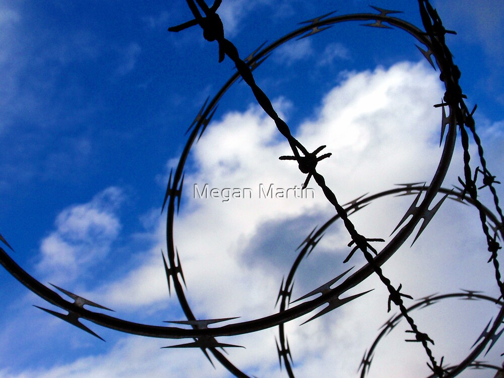 Keep Out by Megan Martin