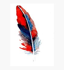feather  3 Photographic Print
