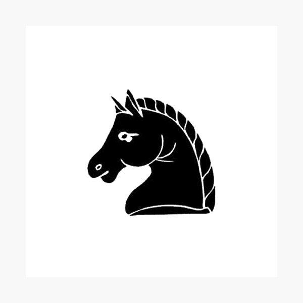 Black knight chess piece. Letter, sign, emblem, type, mark, badge, token, designation, #BlackKnight, #chess, #piece, #Letter, #sign, #emblem, #type, #mark, #badge Photographic Print