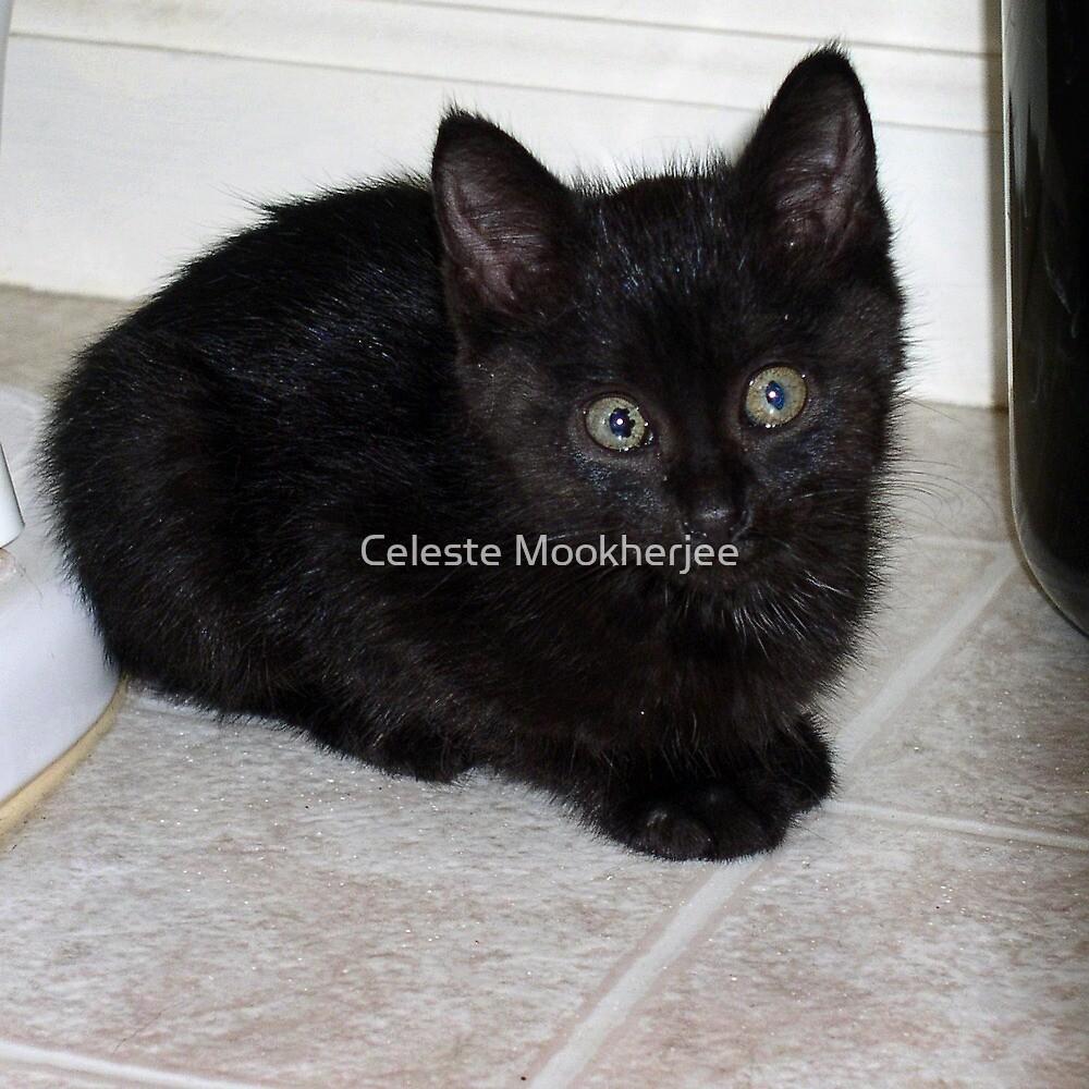 Baby Chloe von Celeste Mookherjee