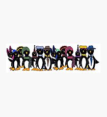 Penguin hat parade Photographic Print