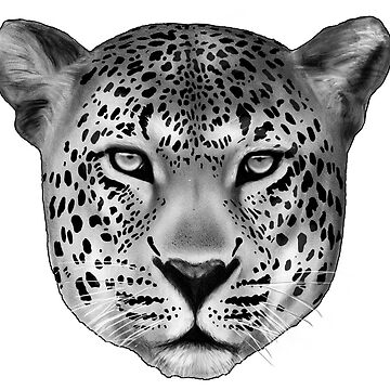 The Leopard by Miln3r