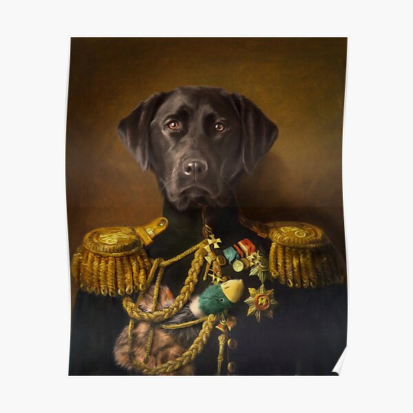 Labrador Portrait - Mambo Poster
