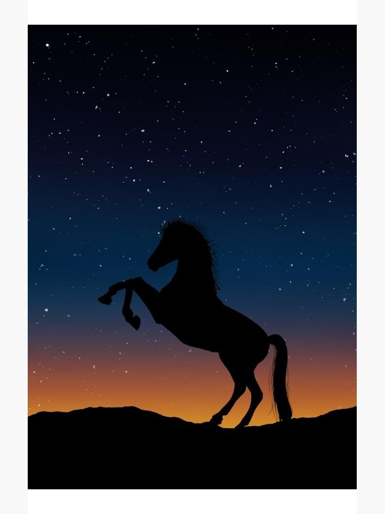 Pferd von primehard