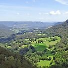 Kangaroo Valley by Steven Guy