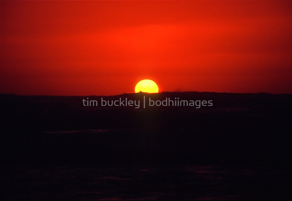 sailors delight. aotearoa by tim buckley | bodhiimages