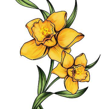 Daffodils by mitalim