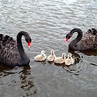 PROUD PARENTS by Raoul Madden
