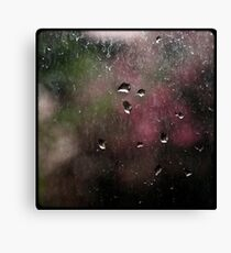 Washed windows are boring! Canvas Print