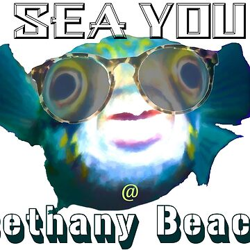 Sea You at Bethany Beach by Tom sachse by TSachse