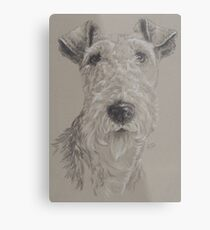 Wire-haired Fox Terrier Metal Print