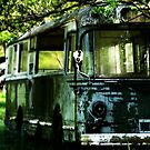 The wheels on the bus... by kibishipaul