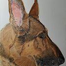 German Shepherd Dog by Anita Putman