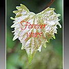 Forever Yours by Dana Yoachum