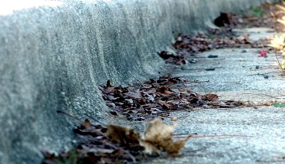 Dried Leafs in a Granite Gutter by nastruck