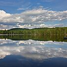 How I Spent my Summer Vacation - Wilson Lake by Jim Cumming