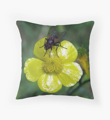 Fly On Buttercup Throw Pillow