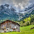 The Makeshift Barn by Viv Thompson