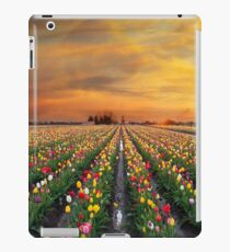 Sunset over colorful Tulip flower fields in full bloom during spring season tulip festival in Woodburn Oregon iPad Case/Skin
