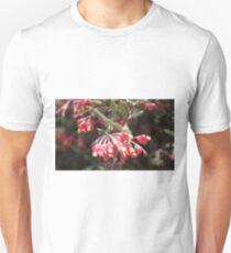 Pouched Grevillea (G. saccata) Unisex T-Shirt
