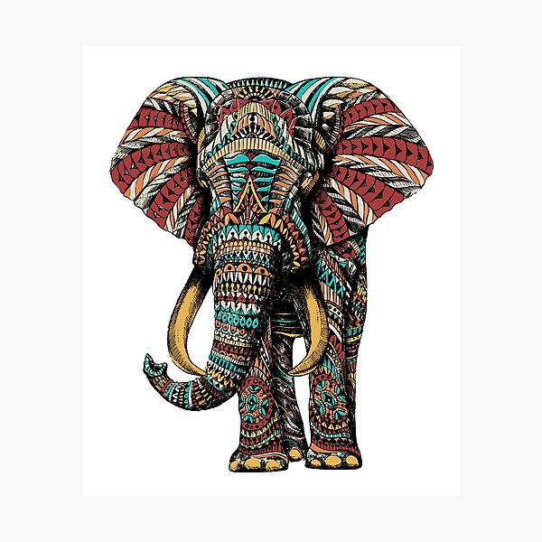 Ornate Elephant (Color Version) Photographic Print